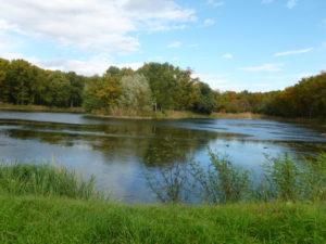 Photo de l'étang de l'isle à Lezoux