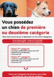 Déclaration détention chien